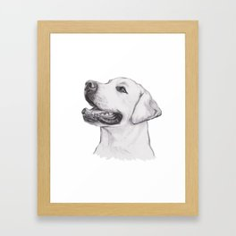 Gotta draw the smiley yelow lab Framed Art Print