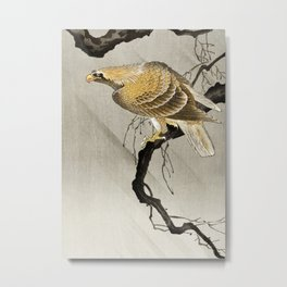 Ohara Koson, Golden Eagle Sitting On The Tree - Vintage Japanese Woodblock Print Metal Print