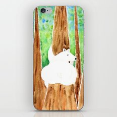 Polar Bear On Holiday iPhone & iPod Skin