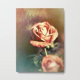 Scents of Roses Metal Print