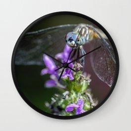 Blue eyed Dragonfly Wall Clock