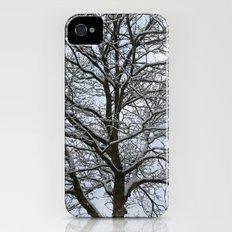 Snowy tree iPhone (4, 4s) Slim Case