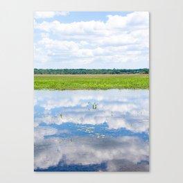 Florida Beauty 2 Canvas Print