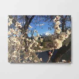 Sopris Bloom Metal Print