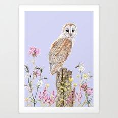 Meadow Barn Owl Art Print