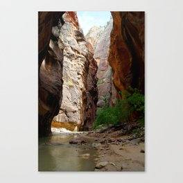 Narrows in Zion Park Canvas Print