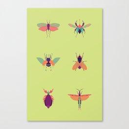 Bug Me Canvas Print
