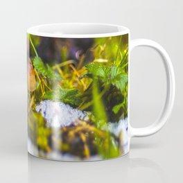 Small Mushroom Coffee Mug