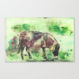 Aubergine Canvas Print