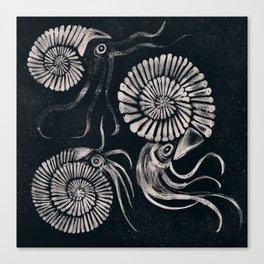 ammonites Canvas Print