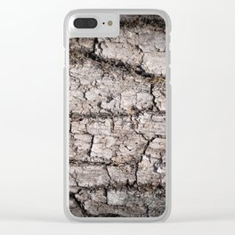 Texture - a bark of old oak with moss Clear iPhone Case
