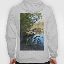 Where Canoes and Raccoons Go Series, No. 2 Hoody