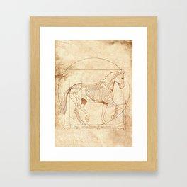 Da Vinci Horse In Piaffe Framed Art Print