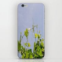 dramatical murder iPhone & iPod Skins featuring Murder by Seasoulstorm