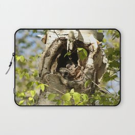 2 barred owl babies in the nest Laptop Sleeve
