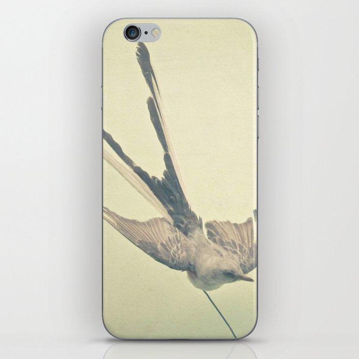 Bird Study #1 iPhone Skin