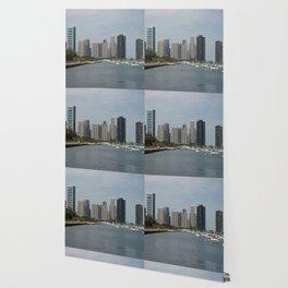Chicago Shoreline, Skyline, Lake Michigan Wallpaper