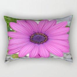 Violet Pink Osteospemum Flower Daisy  Rectangular Pillow