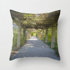 Perfect pathway Throw Pillow