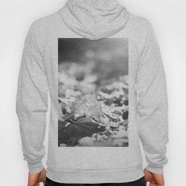 Autumn Leafs (Black and White) Hoody