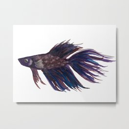 Original Betta Fish Watercolor Metal Print