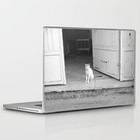 arab Laptop & iPad Skins featuring Arab kitty by Raleigh Tillman
