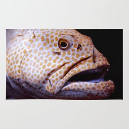 Coral Grouper Being Cleaned Rug