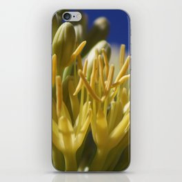 Closeup of Blossoming Parry's Century Plant iPhone Skin