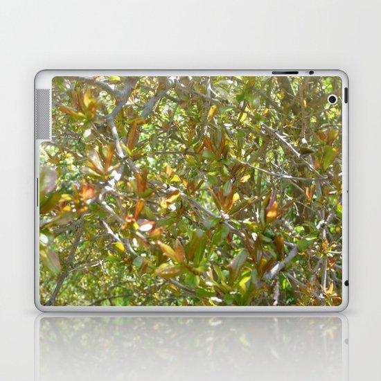 Motley Laptop & iPad Skin