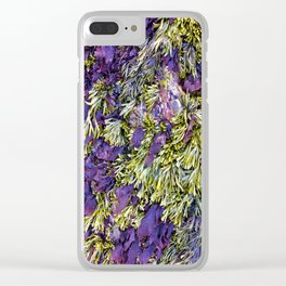 Bolinas Tide Pool Clear iPhone Case