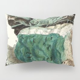 Vintage Mineralogy Illustration Pillow Sham