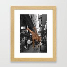 Safary in City. African Invasion. Framed Art Print