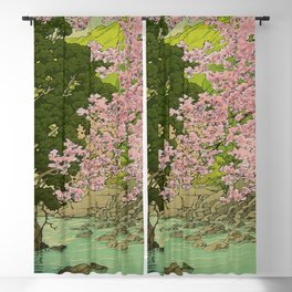 Shaha - A Place Called Home Blackout Curtain