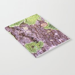 Tree Bark Pattern with Lichen #7 Notebook