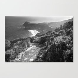 Path along cliffs of Cape Point, South Africa Canvas Print