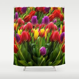 The Dutch Golden Age of Tulips, A Still Life by Jeanpaul Ferro Shower Curtain
