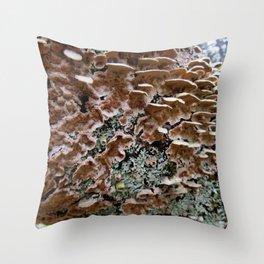 Fungi on a Fallen Tree Throw Pillow