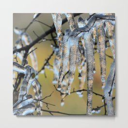 Icicles on a small tree Metal Print