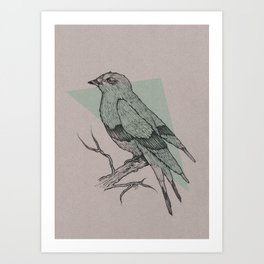 Bird Fascination Art Print