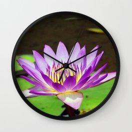 Water Lily Magic Wall Clock