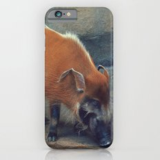 Red River Hog iPhone 6s Slim Case