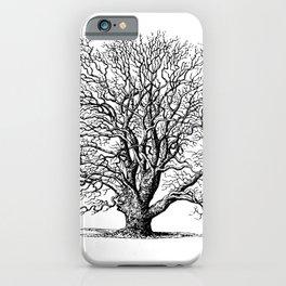 oak tree botanical no2 iPhone Case