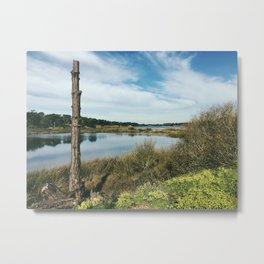 Lake Merced Metal Print