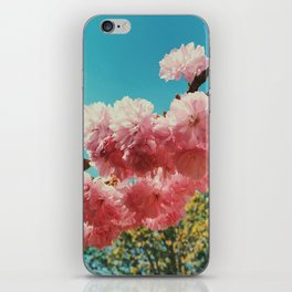Spring Flowers in D.C. iPhone Skin