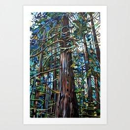 Tofino Rain Forest Painting Art Print