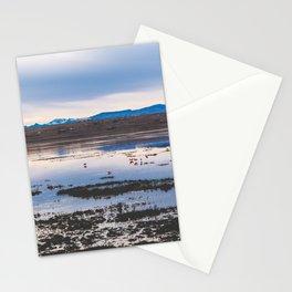Flamingoes on El Calafate, Patagonia, Argentina 2 Stationery Cards