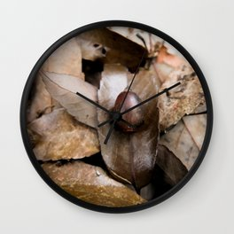 Donguri Deadfall Wall Clock