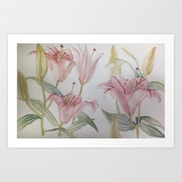 Watercolor Lily Art Print