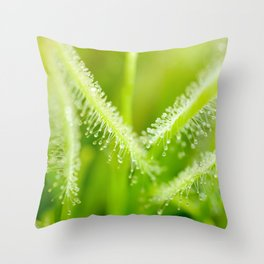 Green leaves of sundews Throw Pillow