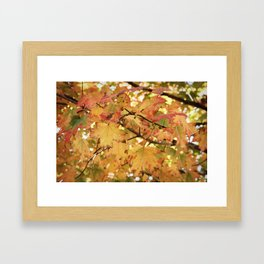 Fallin' Framed Art Print